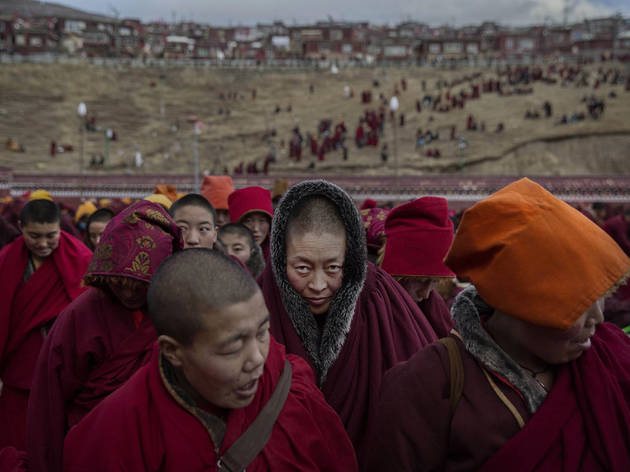 World Press Photo 2016 photo contest Daily Life second prize stories October 2015 Kevin Frayer for Getty Images Bliss Dharma Assembly 02