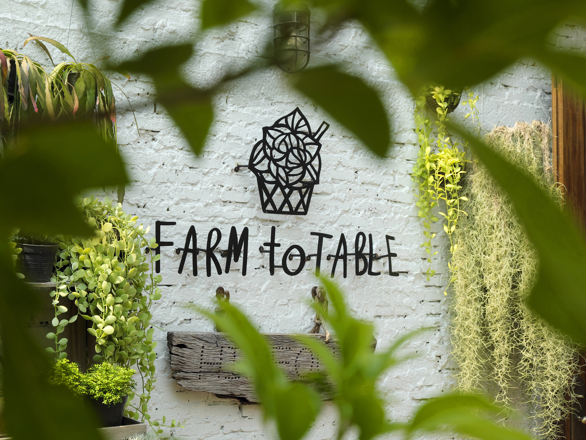 At Farm to Table, Hideout in Bangkok