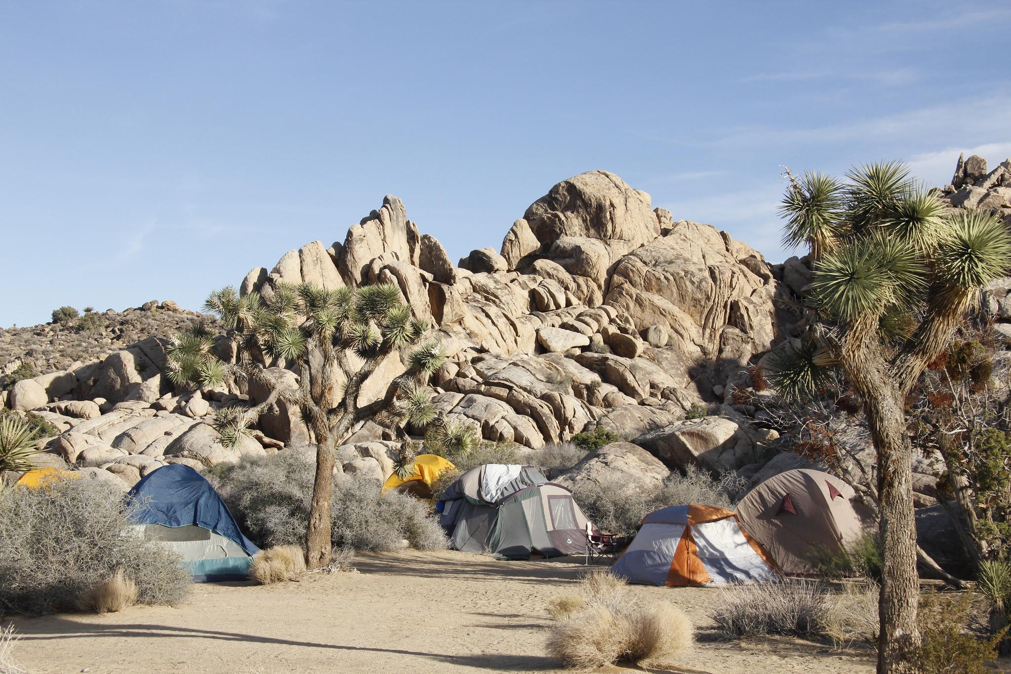 Joshua Tree Camping Guide For Desert Adventurers