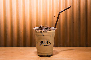 Roots Coffee Roaster 05