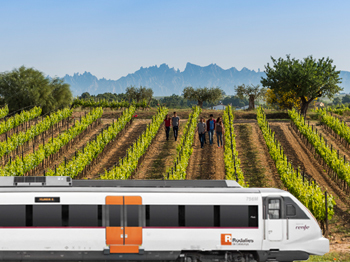 A train to the heart of the vineyards