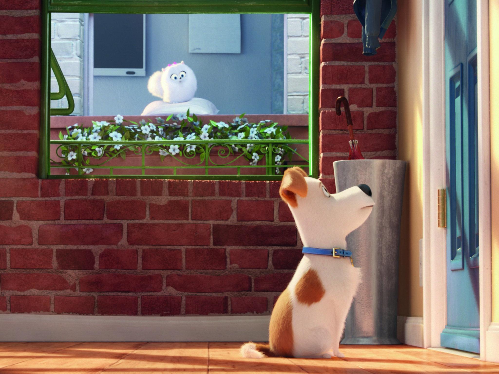 Premier: La vida secreta de tus mascotas