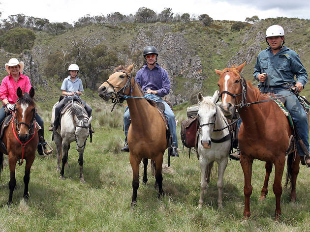 Horseback Riding Tours Nj
