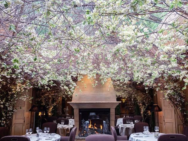 Best gardens in London restaurants, Clos Maggiore