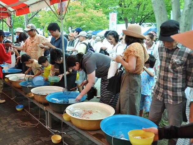 第45回 江戸川区特産金魚まつり2