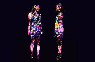 Flowers on People teamLab, 2016, Digitized Nature, Endless