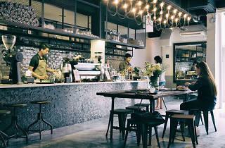 Dutch Colony Coffee Co