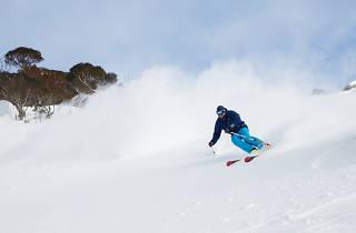 Skiers Powder