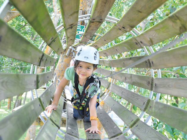 Forest Adventure Kids Course