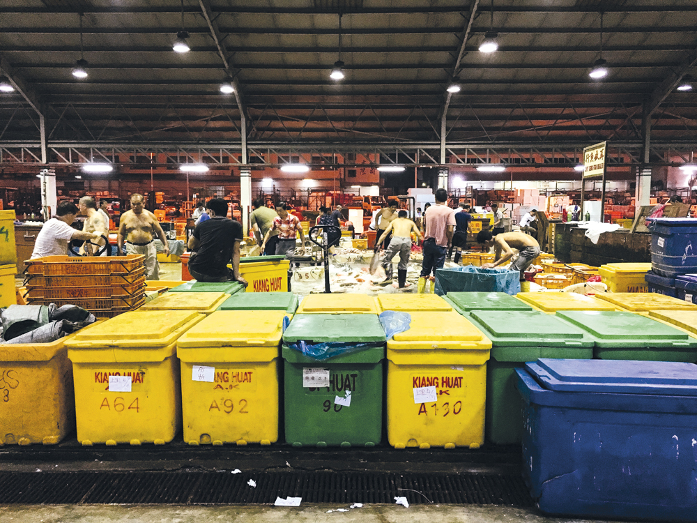 City stories: Jurong Fishery Port
