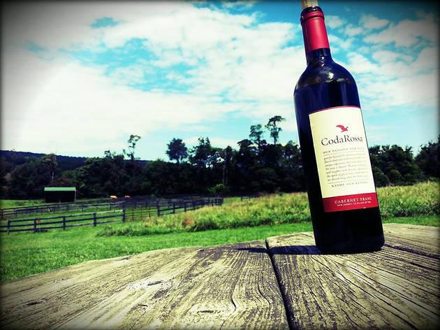 wine tasting nj