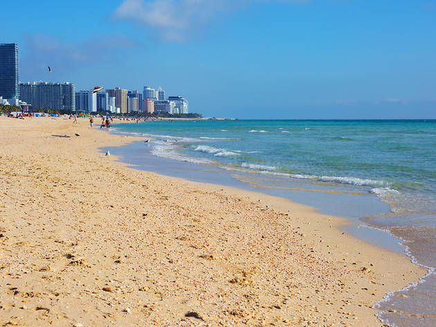 The best beaches in Miami