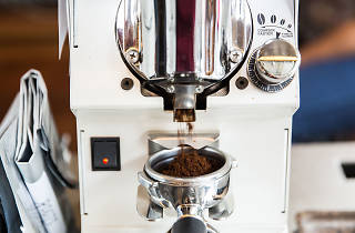 Roots Coffee Roaster 03
