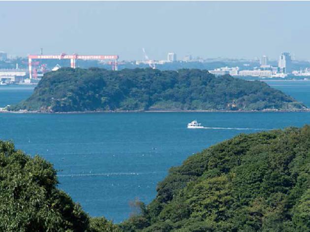 Saru Island