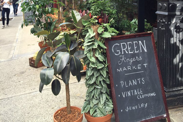 Green Fingers Market