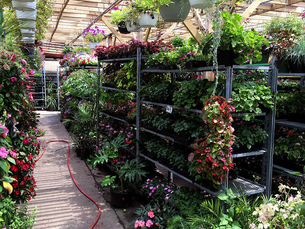 Find the best garden store in NYC