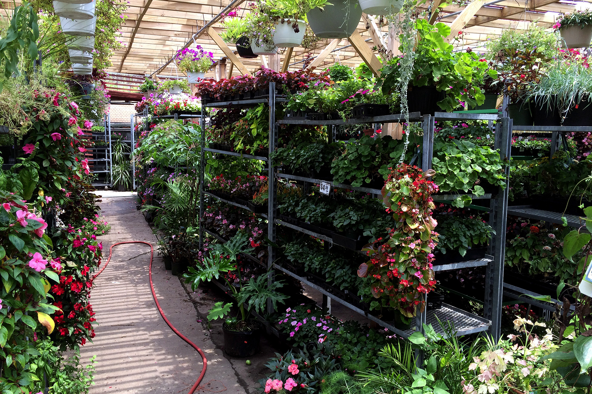 Landscaped Gardens Facility: Best Garden Store Options In NYC For Plants, Flowers