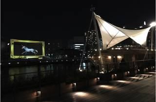 天王洲キャナル夏Fes CINEMA CARAVAN in 天王洲