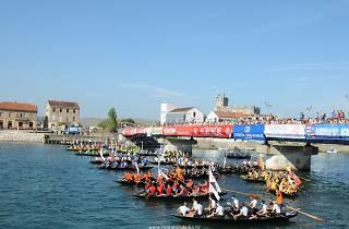 Neretva boat race