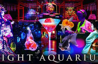 ECO EDO 日本橋アートアクアリウム 2015 〜江戸 金魚の涼~&ナイトアクアリウム