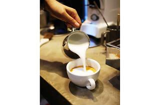 Aluco Café
