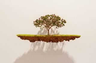 """Jorge Mayet, """"Broken Landscapes"""""""