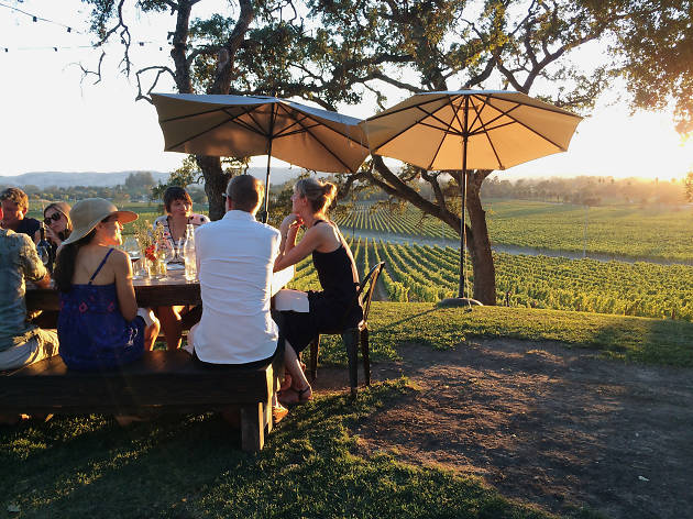 The 10 best Sonoma wineries