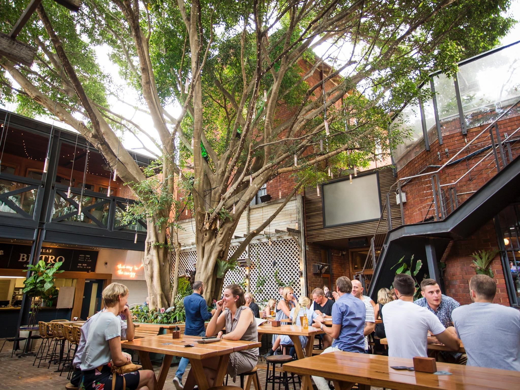 Beer garden at The Sheaf