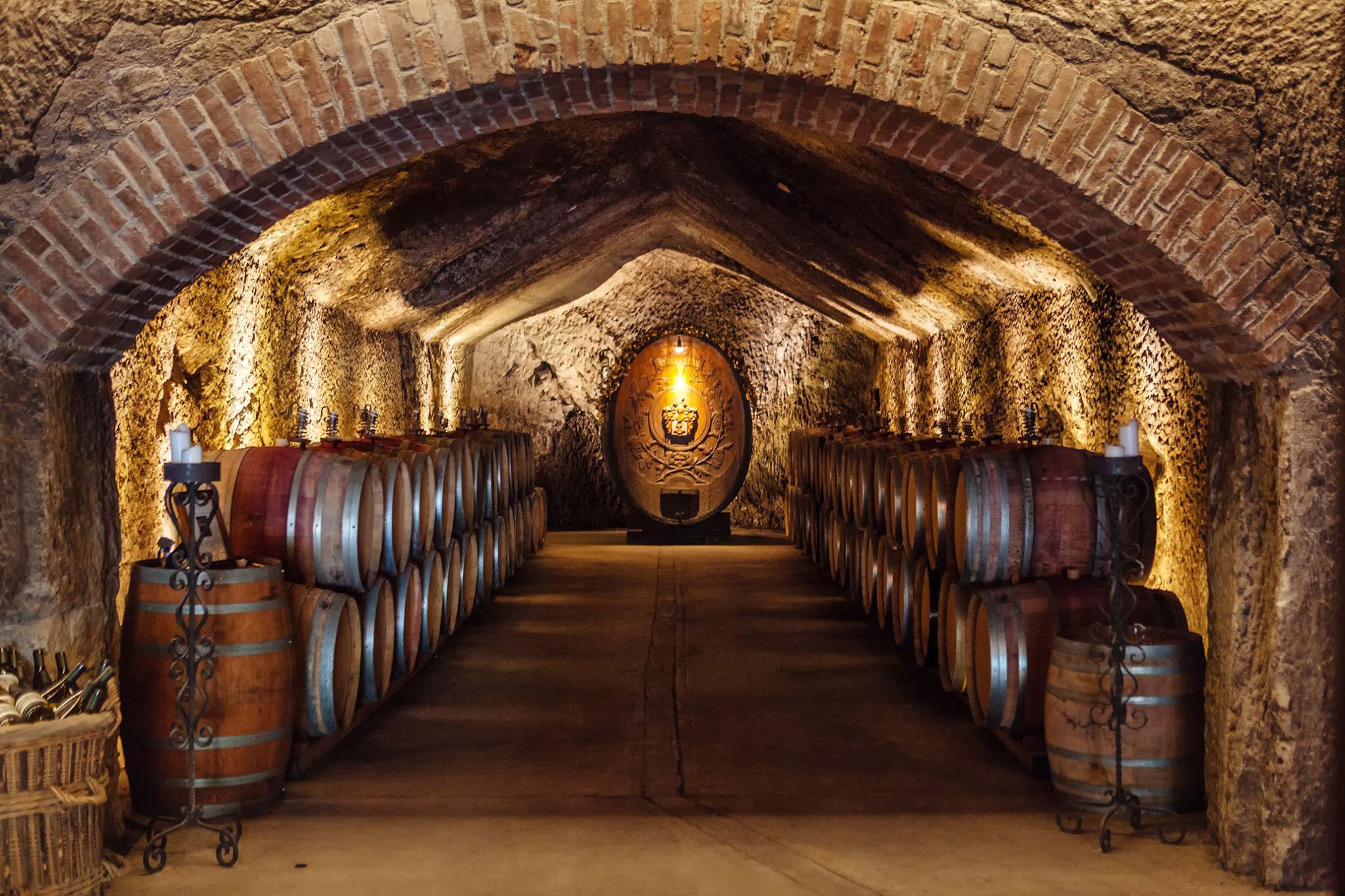Best Paso Robles Winery Tour