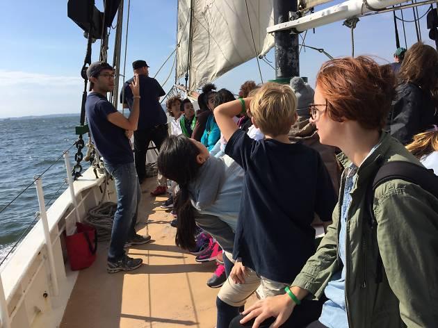 Sail Pioneer!