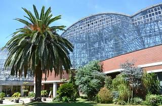 夢の島熱帯植物館夜間開館20162