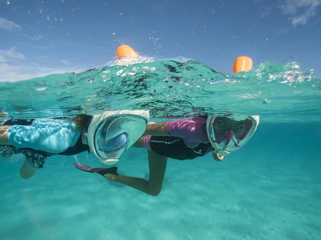 Decathlon snorkelling