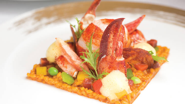 Roasted lobster in its shell served with Spanish saffron rice