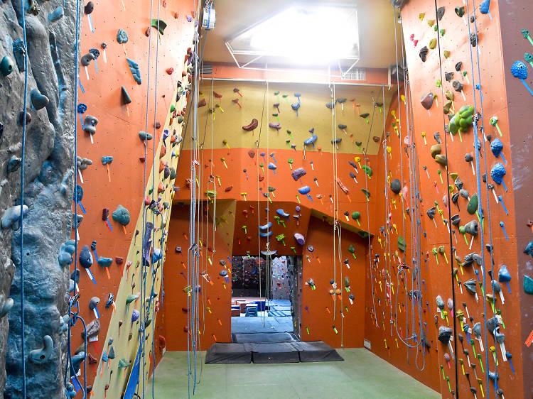 The Climbing Gym at Manhattan Plaza Health Club