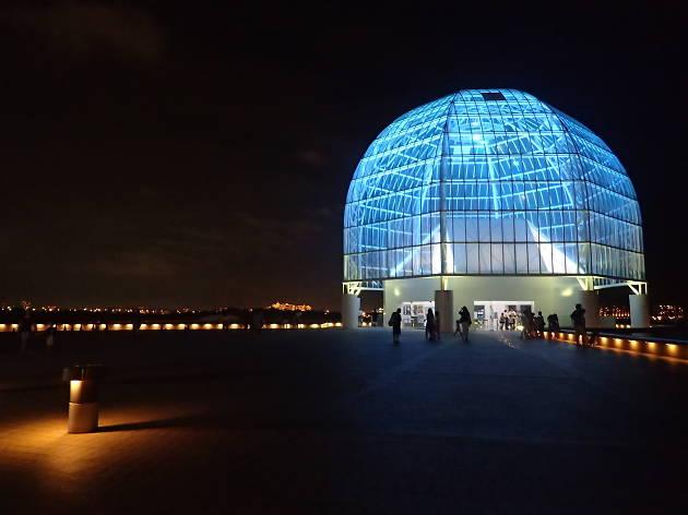 Night of Wonder~夜の不思議の水族園~