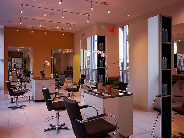 Paul LaBrecque Salon