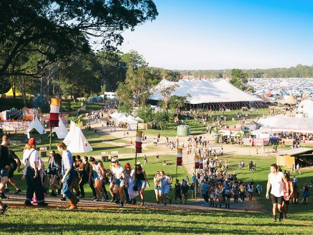 Crowd at Splendour in the Grass 2016