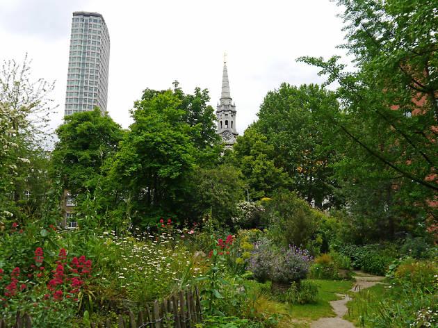 Phoenix Garden Attractions In Covent Garden London