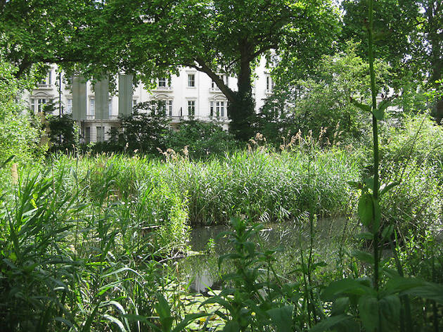NHM Wildlife Garden (2011)