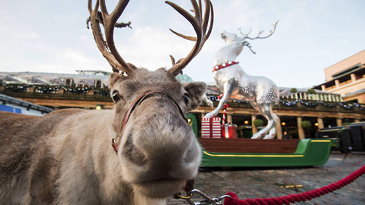 Best London Christmas activities for children
