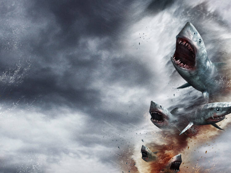 'Sharknado', 2013