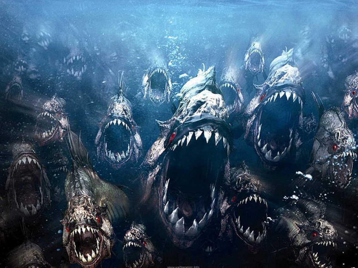 Els monstres marins més terrorífics!