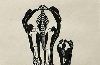 Local Fauna – Linocut Prints by Sharon Chin