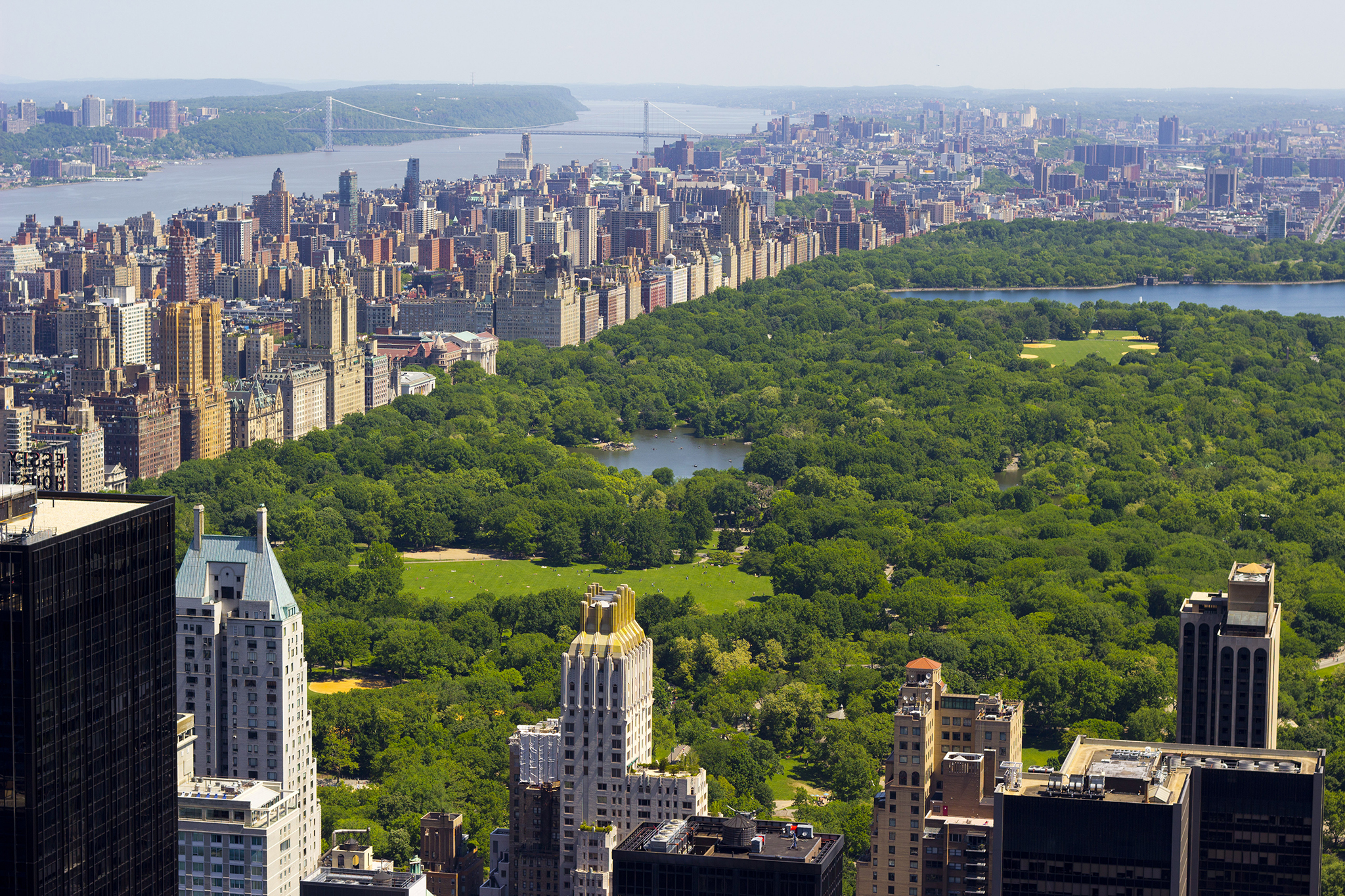 best things to do in central park from boating to events