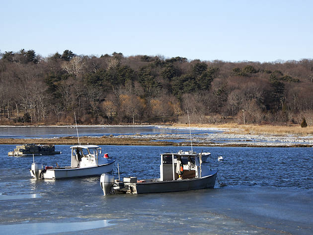 Cold Spring Harbor State Park (Cold Spring Harbor)