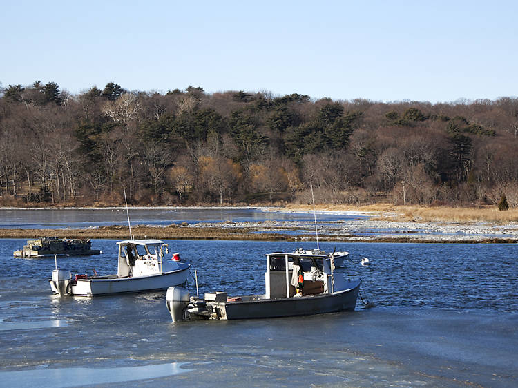 Cold Spring Harbor State Park (Cold Spring Harbor)