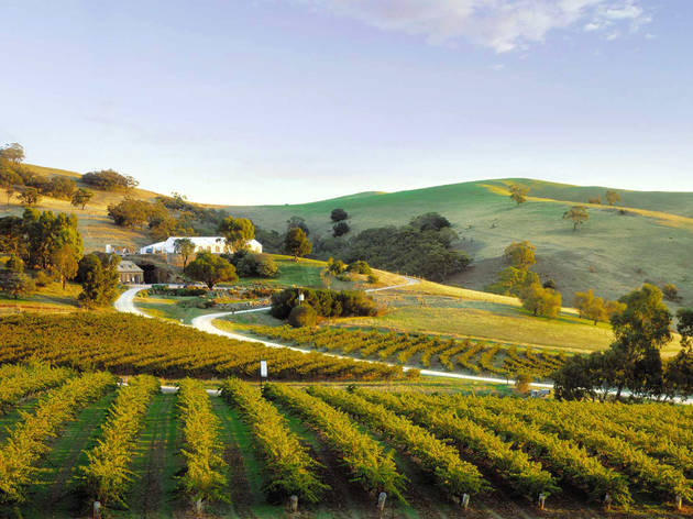 Fleurieu Peninsula travel guide