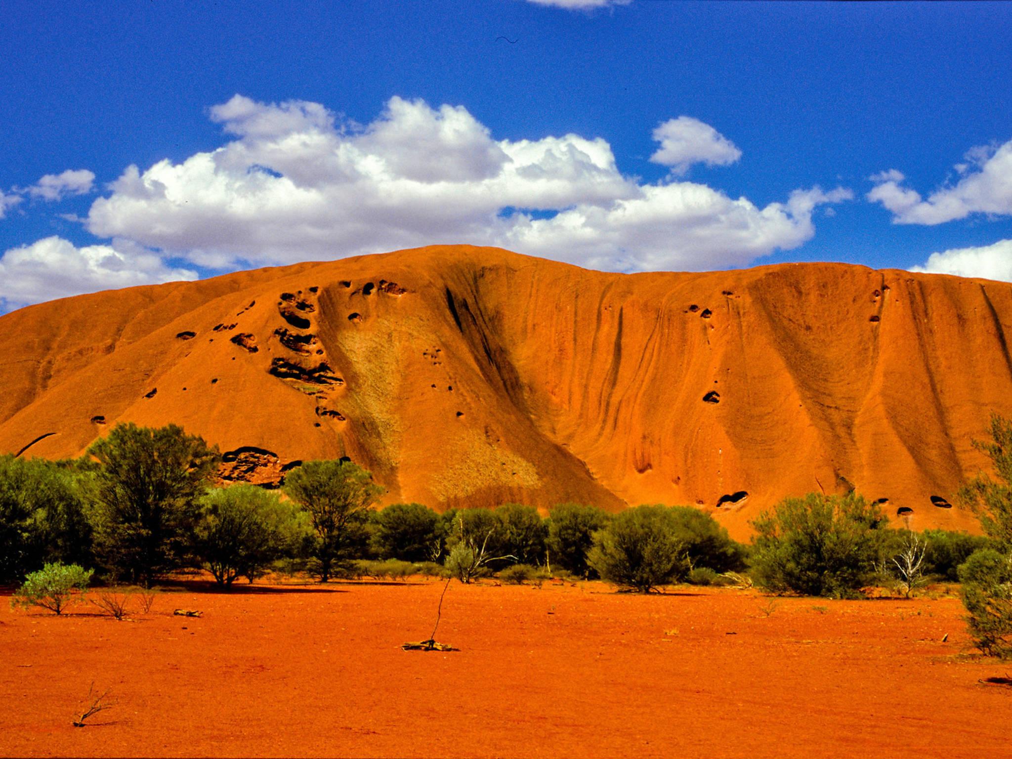 Things to do in Uluru-Kata Tjuta National Park