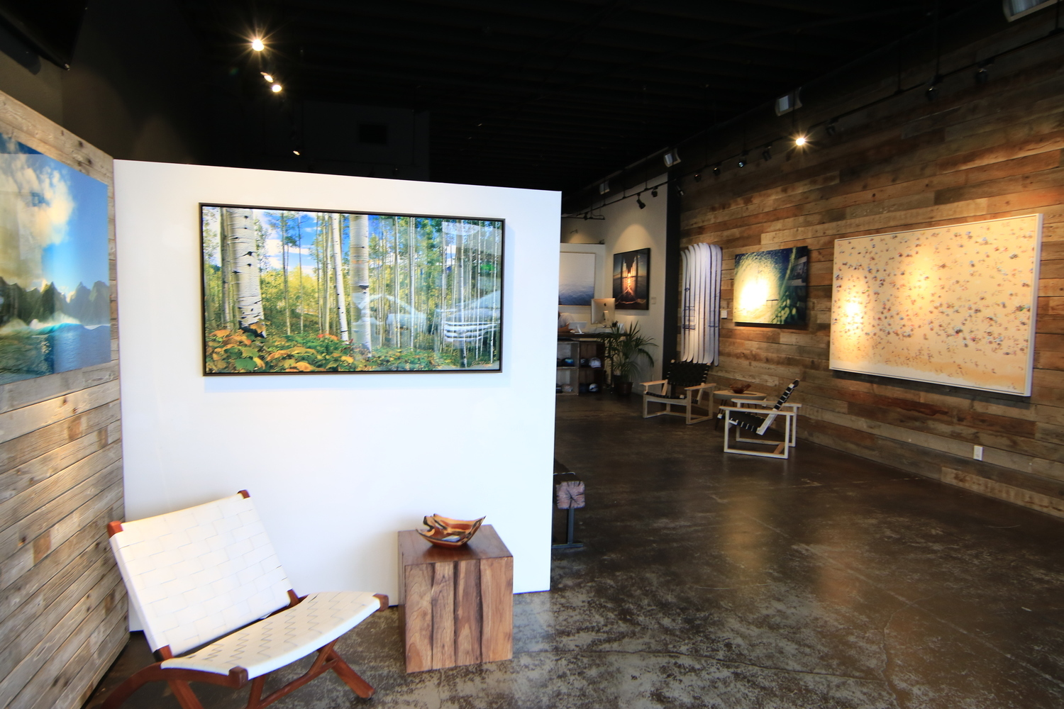 Bo Bridges Gallery