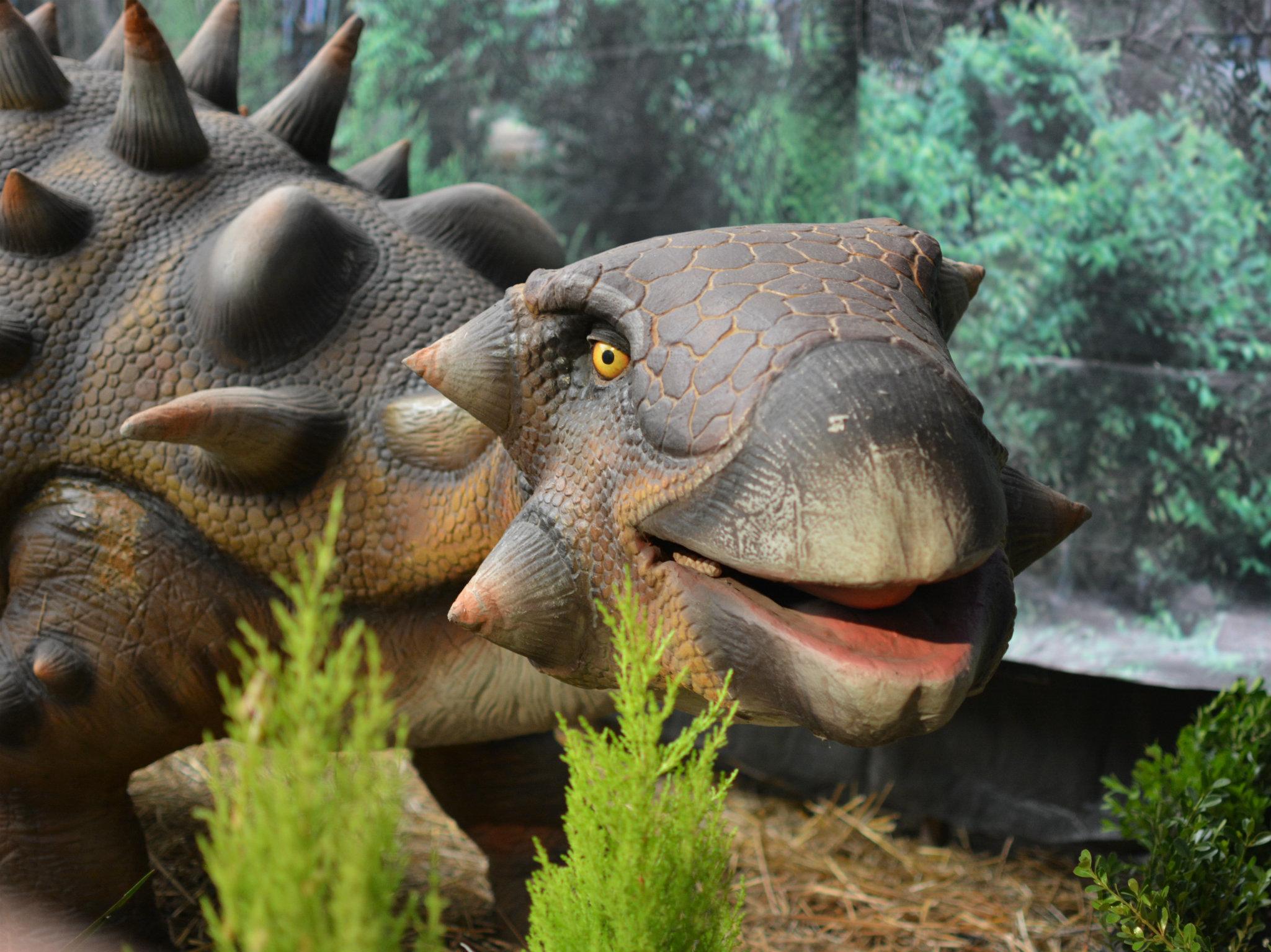 Expo Dinosaurios Animatronics